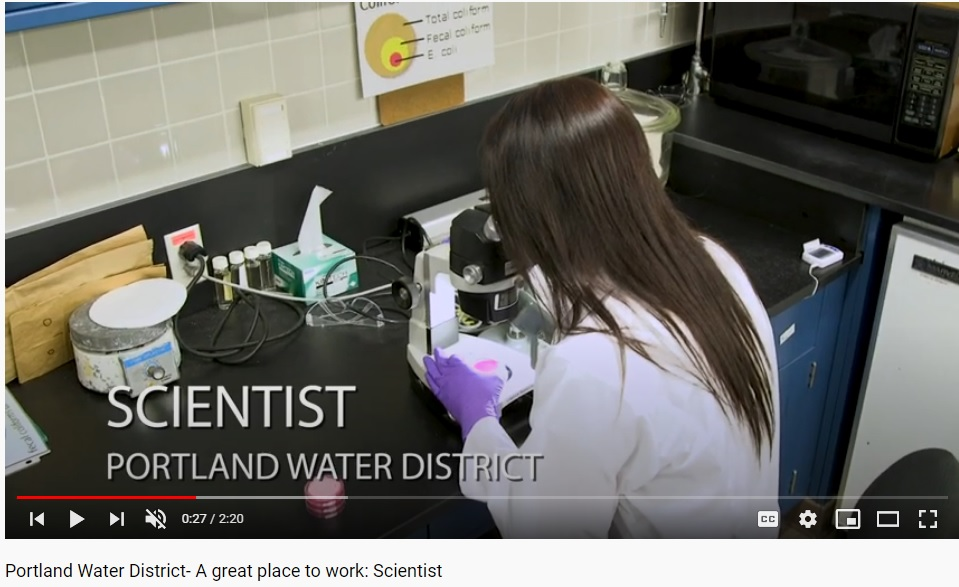 A great place to work: Scientist