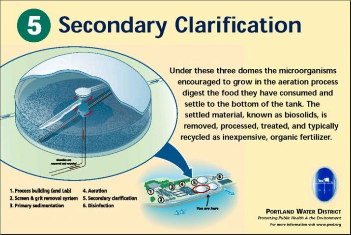 Secondary Clarification